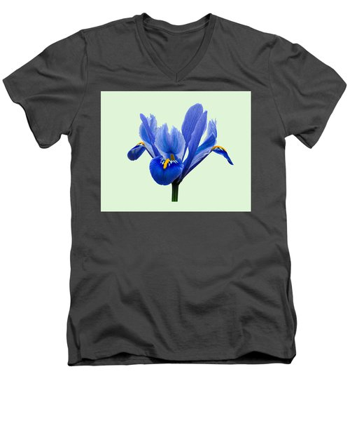 Iris Reticulata, Green Background Men's V-Neck T-Shirt