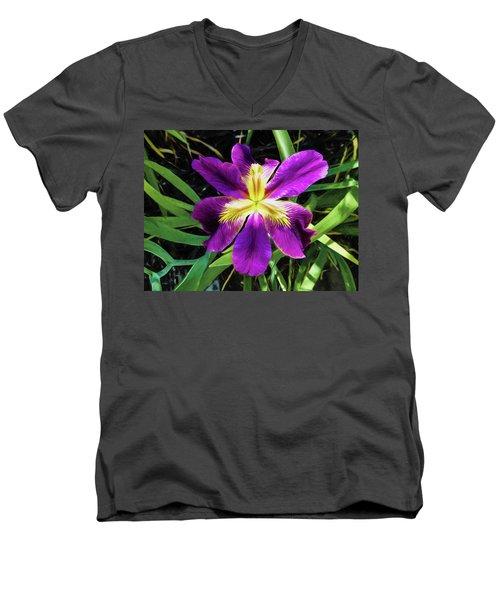 Island Iris 2 Men's V-Neck T-Shirt