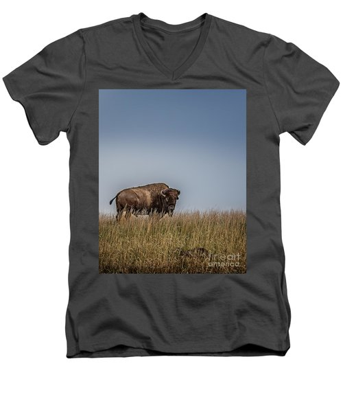 It's A Good Life Men's V-Neck T-Shirt