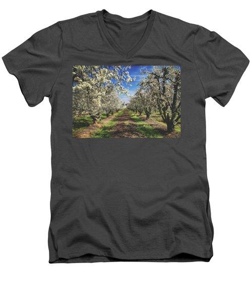 It's A New Day Men's V-Neck T-Shirt by Laurie Search