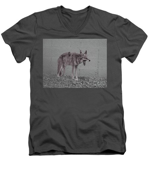 Men's V-Neck T-Shirt featuring the photograph It's Been A Rough Day by Anne Rodkin