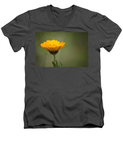 It's Spring Men's V-Neck T-Shirt