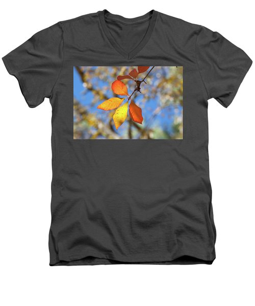 Men's V-Neck T-Shirt featuring the photograph It's Time To Change by Linda Unger