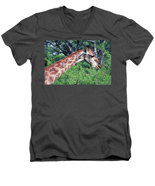 I've Got Stories To Tell Men's V-Neck T-Shirt