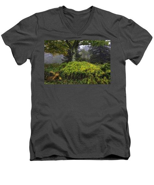 Ivy Garden Men's V-Neck T-Shirt