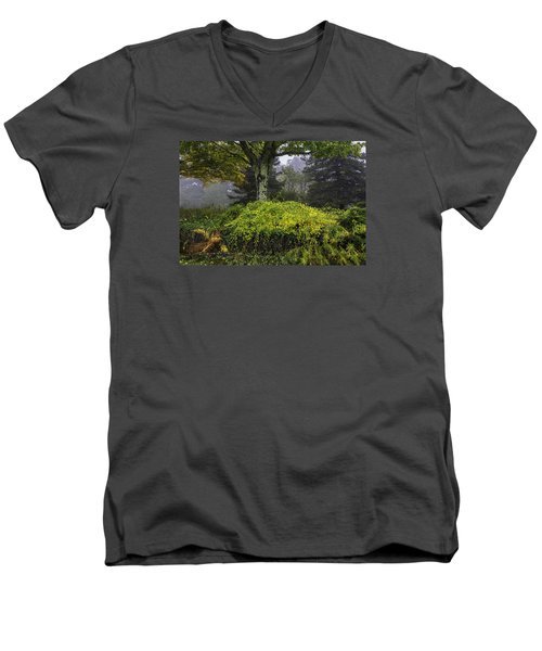 Ivy Garden Men's V-Neck T-Shirt