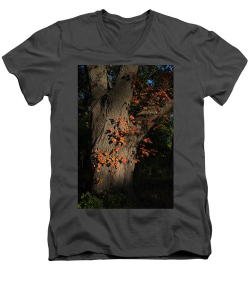 Ivy In The Fall Men's V-Neck T-Shirt