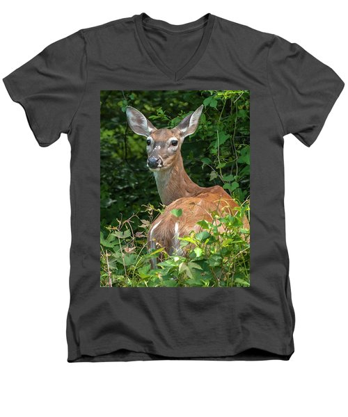 Ivy League Doe Men's V-Neck T-Shirt
