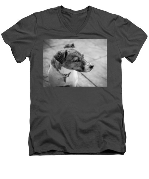 Men's V-Neck T-Shirt featuring the photograph Jack Russell by Nick Bywater