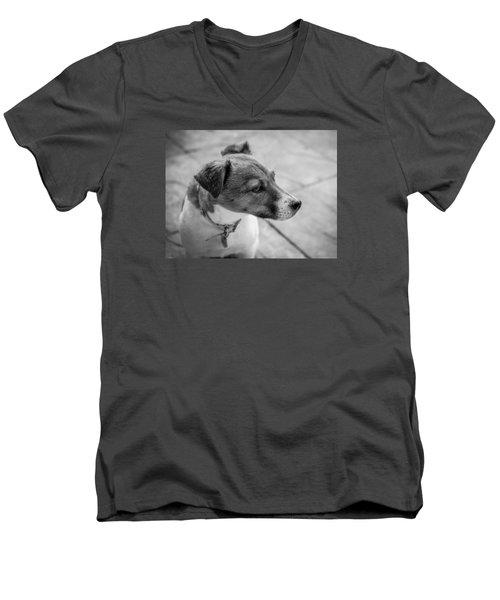 Jack Russell Men's V-Neck T-Shirt