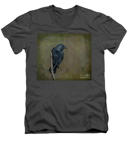 Jackdaw Men's V-Neck T-Shirt
