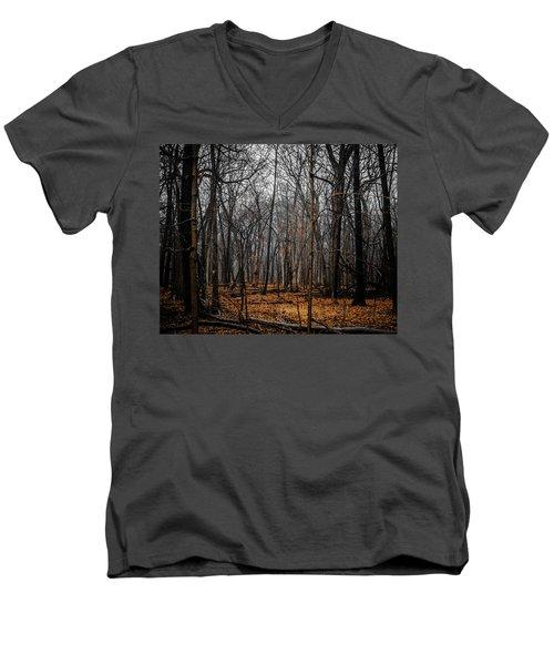 January Forest Rains Men's V-Neck T-Shirt