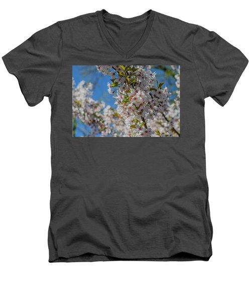Japanese Cherry  Blossom Men's V-Neck T-Shirt by Daniel Precht