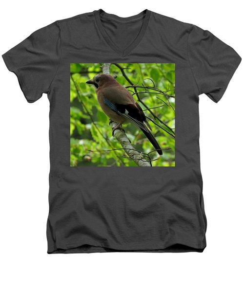 Jay Men's V-Neck T-Shirt