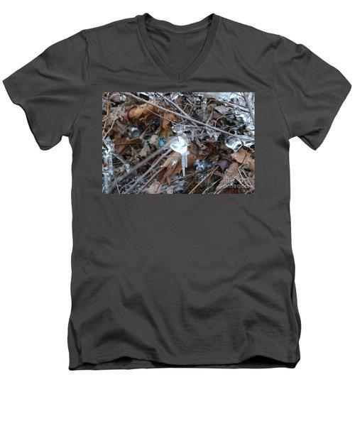 Jewel Of Winter 1 Men's V-Neck T-Shirt