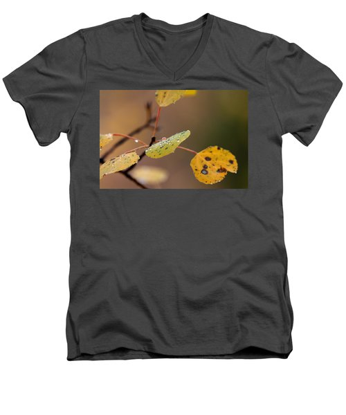 Jewels Of Autumn Men's V-Neck T-Shirt