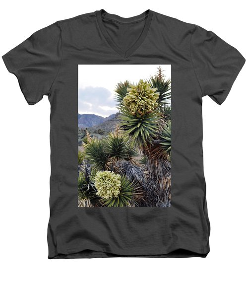 Joshua Tree Bloom Rainbow Mountain Men's V-Neck T-Shirt