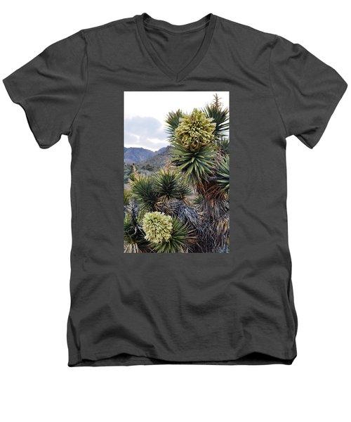 Joshua Tree Bloom Rainbow Mountain Men's V-Neck T-Shirt
