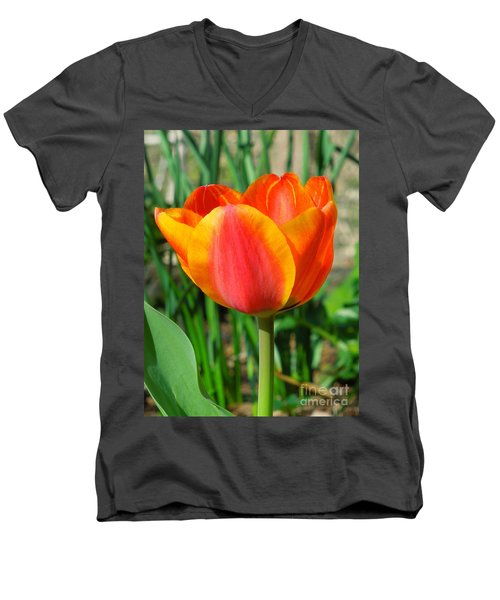Joyful Tulip Men's V-Neck T-Shirt