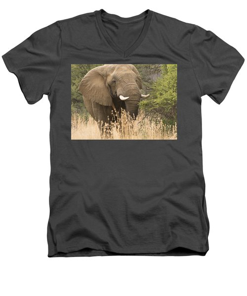 Jumbo Men's V-Neck T-Shirt by Patrick Kain