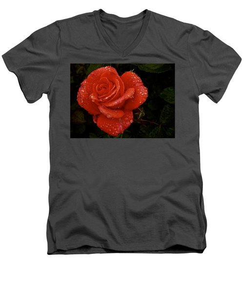 Men's V-Neck T-Shirt featuring the photograph June 2016 Rose No. 3 by Richard Cummings