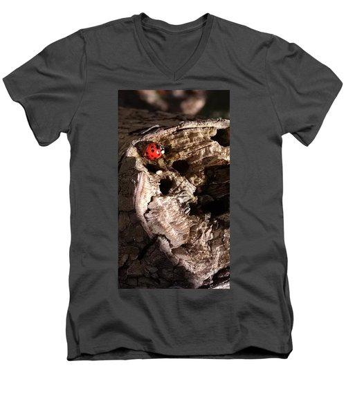 Just A Place To Rest Men's V-Neck T-Shirt
