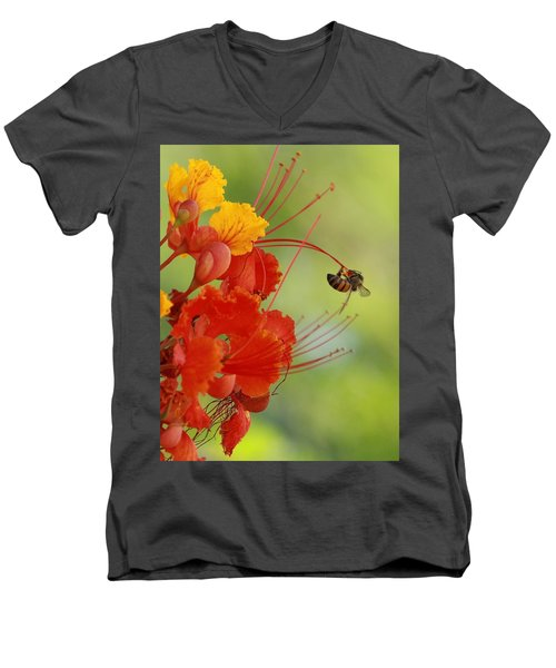Just Hanging Around Men's V-Neck T-Shirt