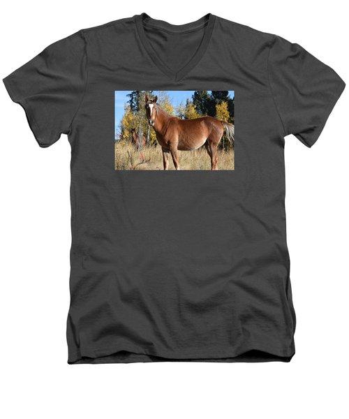 Horse Cr 511 Divide Co Men's V-Neck T-Shirt