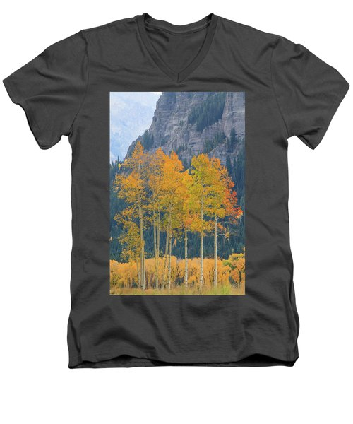 Men's V-Neck T-Shirt featuring the photograph Just The Ten Of Us by David Chandler