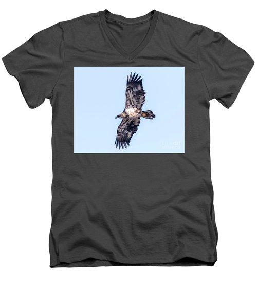 Men's V-Neck T-Shirt featuring the photograph Juvenile Bald Eagle 2017 by Ricky L Jones
