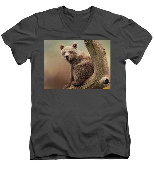 Juvenile Brown Bear - 365-5 Men's V-Neck T-Shirt by Inge Riis McDonald