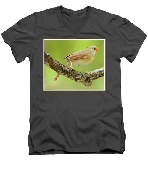 Juvenile, Female Cardinal, Animal Portrait Men's V-Neck T-Shirt