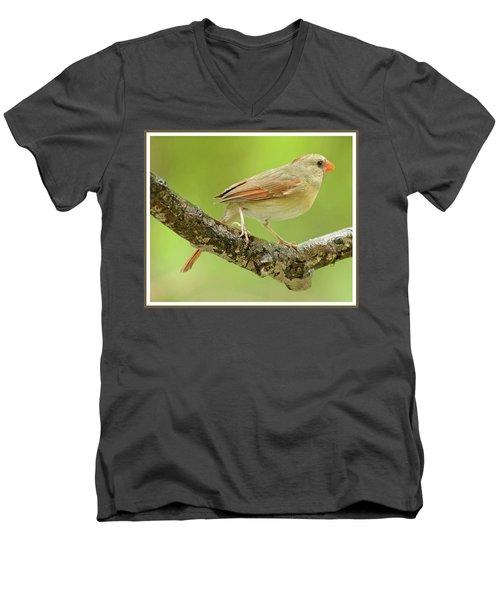 Juvenile, Female Cardinal, Animal Portrait Men's V-Neck T-Shirt