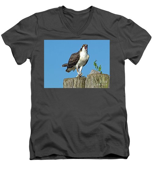 Juvenile Osprey#1 Men's V-Neck T-Shirt