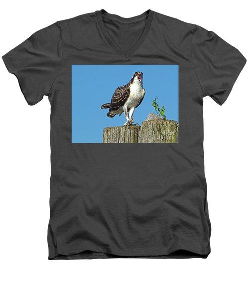 Juvenile Osprey#1 Men's V-Neck T-Shirt