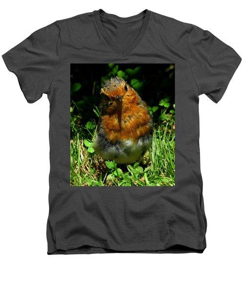 Juvenile Robin 2 Men's V-Neck T-Shirt