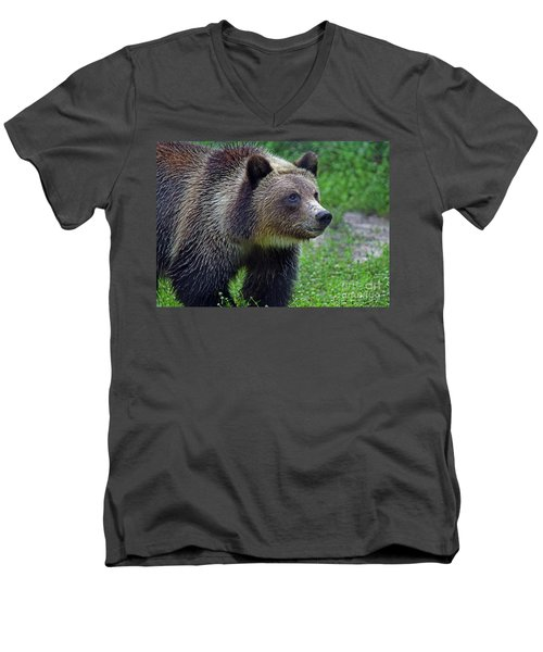 Juvie Grizzly Men's V-Neck T-Shirt by Larry Nieland