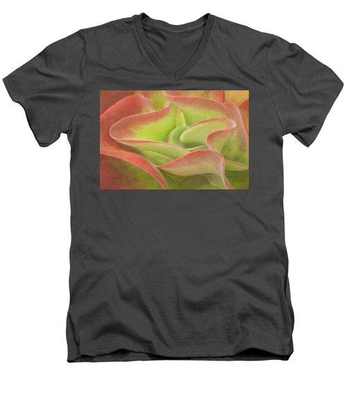 Kalanchoe Lucia The Beautiful Men's V-Neck T-Shirt