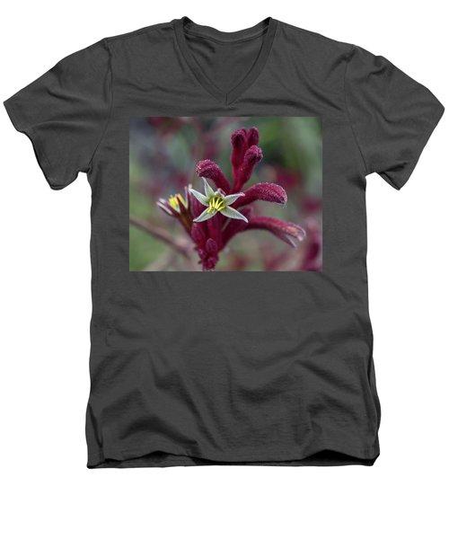 Kangaroo Paw Men's V-Neck T-Shirt