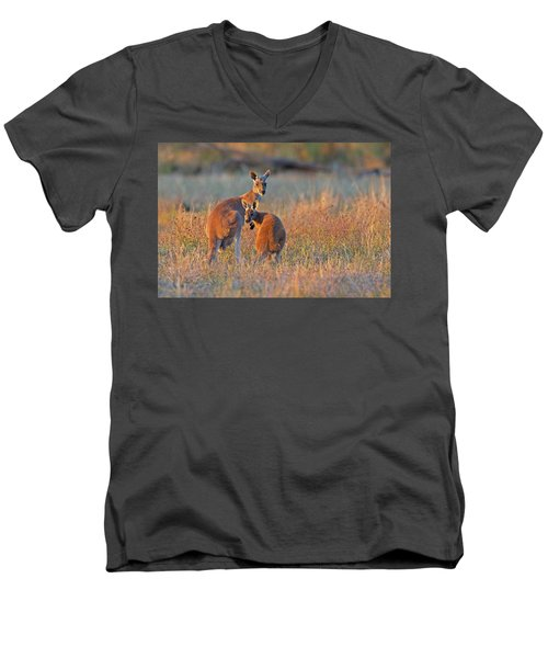 Kangaroos Men's V-Neck T-Shirt