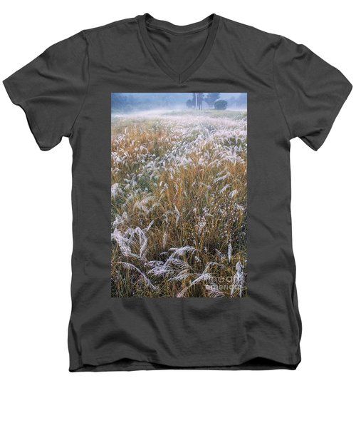 Kans Grass In Mist Men's V-Neck T-Shirt