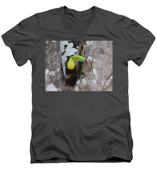 Keel-billed Toucan #2 Men's V-Neck T-Shirt