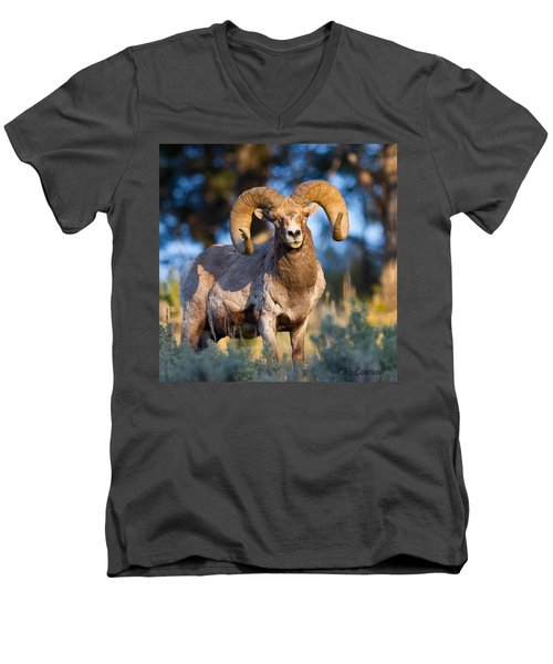 Keeping Watch Men's V-Neck T-Shirt by CR  Courson