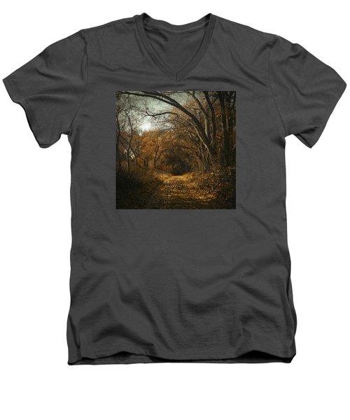 Kern River Preserve - December 2015-2 Men's V-Neck T-Shirt