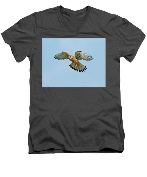 Kestrel In The Wind . Men's V-Neck T-Shirt