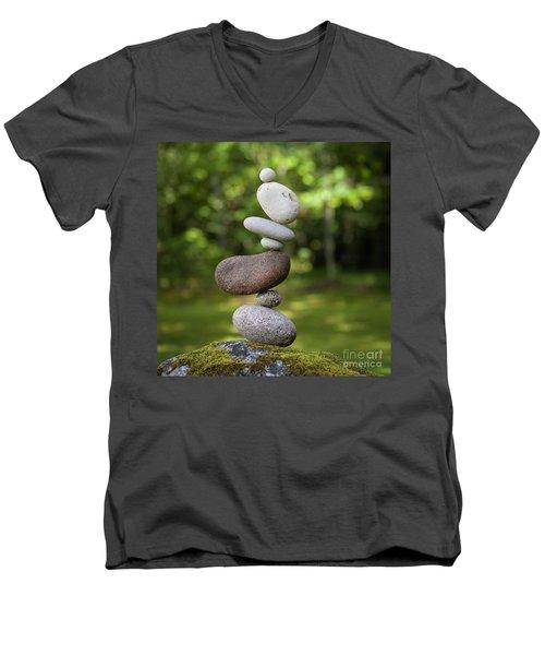 Kidney Bean Men's V-Neck T-Shirt
