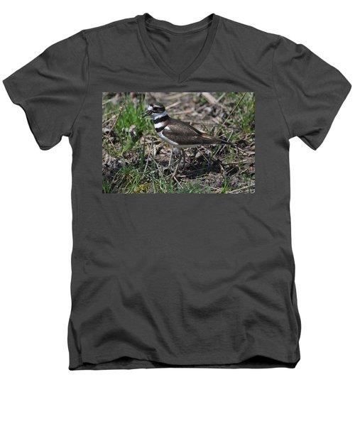 Killdeer Guarding Her Eggs Men's V-Neck T-Shirt