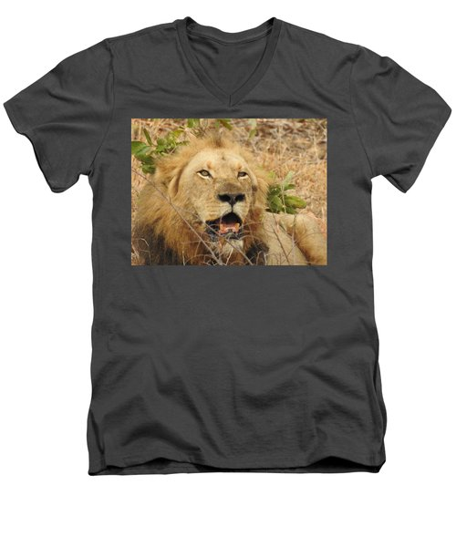 Men's V-Neck T-Shirt featuring the photograph King by Betty-Anne McDonald