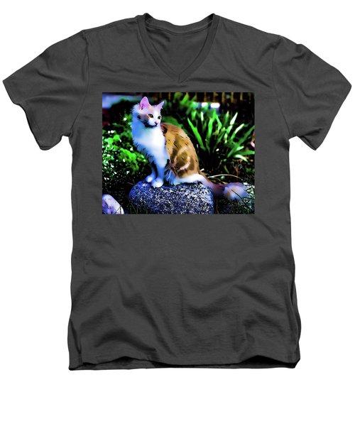 King Of The Hill Men's V-Neck T-Shirt