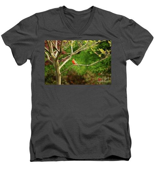 King Parrot Men's V-Neck T-Shirt by Cassandra Buckley